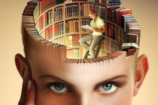 мозг как библиотека